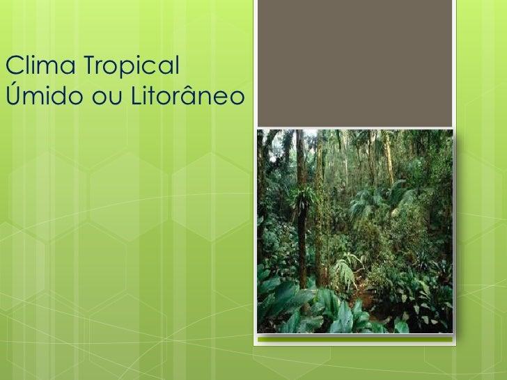 Clima TropicalÚmido ou Litorâneo
