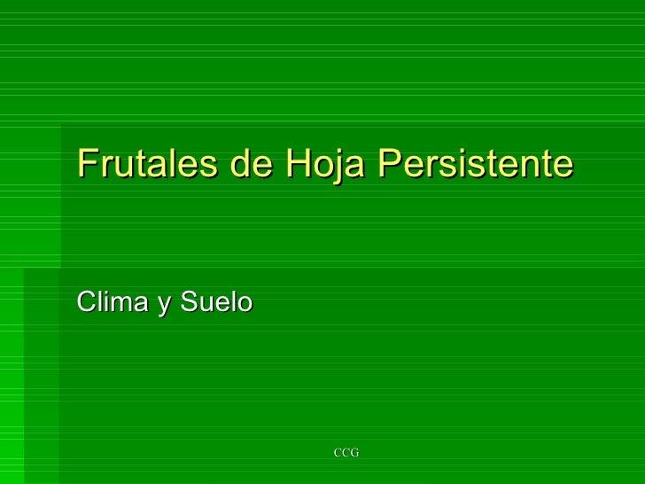 Frutales de Hoja Persistente Clima y Suelo