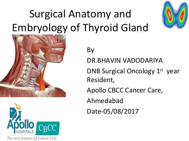 embryology of thyroid gland pdf