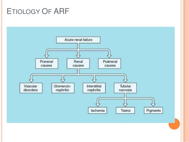 Renal Failure Concept Map.Acute And Chronic Renal Failure Easy Slides