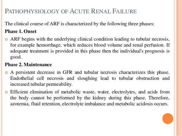 Acute And Chronic Renal Failure Easy Slides