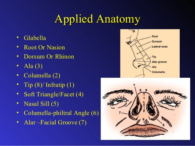 Clinical Aspects Of Cleft Lip Amp Palate Reconstruction