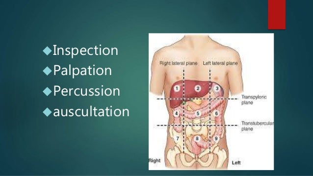 Clinical examination of abdomen medicine inspection palpation percussion auscultation ccuart Choice Image