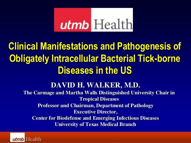 Clinical Manifestations and Pathogenesis ofObligately Intracellular Bacterial Tick-borne             Diseases in the US   ...