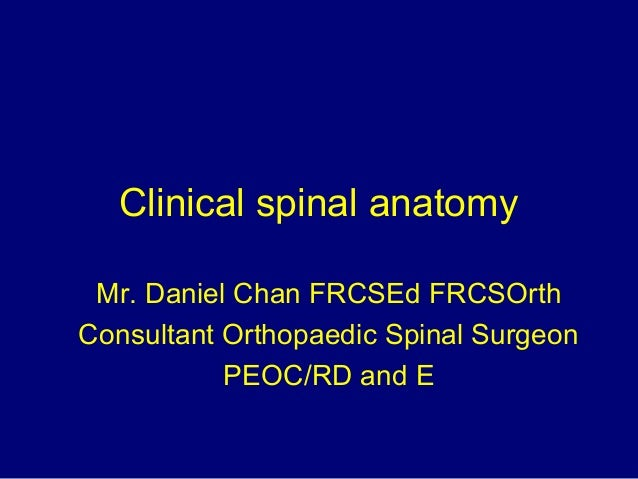 Clinical spinal anatomy Mr. Daniel Chan FRCSEd FRCSOrth Consultant Orthopaedic Spinal Surgeon PEOC/RD and E