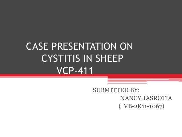 CASE PRESENTATION ON  CYSTITIS IN SHEEP  VCP-411  SUBMITTED BY:  NANCY JASROTIA  ( VB-2K11-1067)