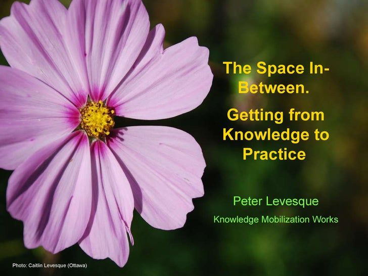 The Space In-Between.  Getting from Knowledge to Practice   Peter Levesque Knowledge Mobilization Works Photo: Caitlin Lev...