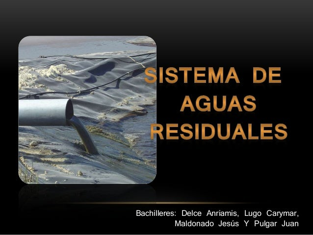 Bachilleres: Delce Anriamis, Lugo Carymar, Maldonado Jesús Y Pulgar Juan
