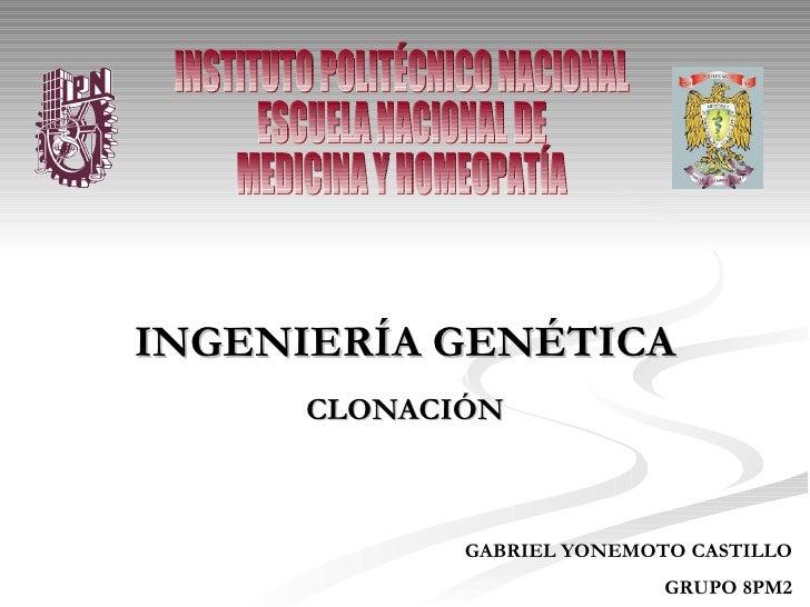 INGENIERÍA GENÉTICA CLONACIÓN GABRIEL YONEMOTO CASTILLO GRUPO 8PM2 INSTITUTO POLITÉCNICO NACIONAL ESCUELA NACIONAL DE  MED...
