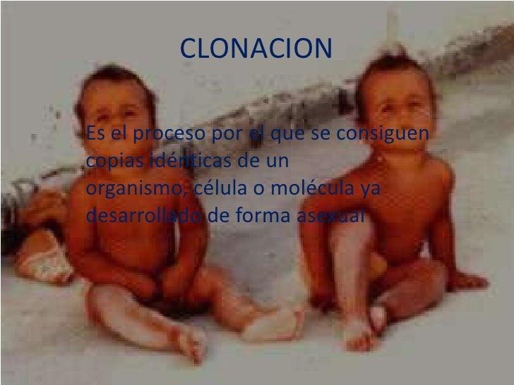 CLONACION<br />Es el proceso por el que se consiguen copias idénticas de un organismo, célula o molécula ya desarrollado d...