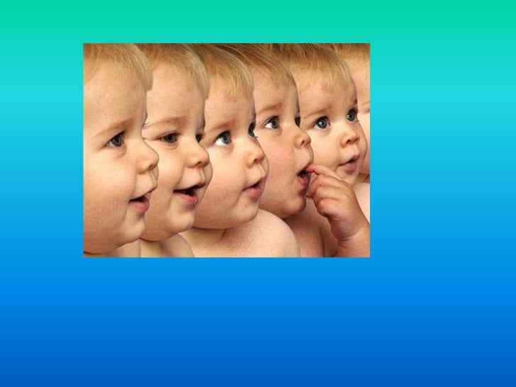 creating life by cloning is immoral essay Therapeutic cloning: it needs cloning is immoral because it lot of the information in this essay is wrong i think it would be beneficial to.