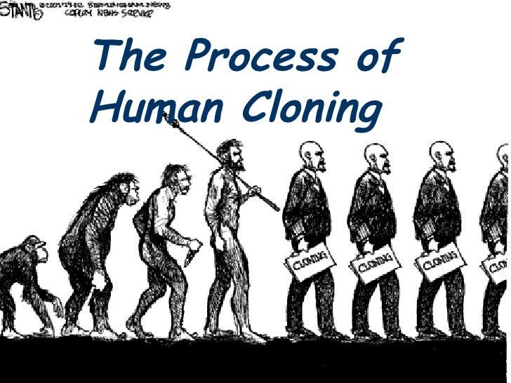 The Process of Human Cloning