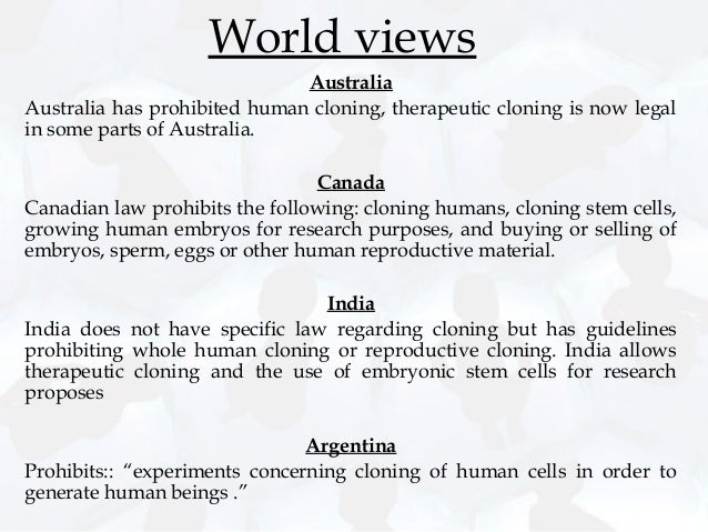 cloning and its moral and ethical issues Essay about ethical issues of human cloning  animal and human cloning: moral, ethical,  these strategies show the organization's expectations of its employees.