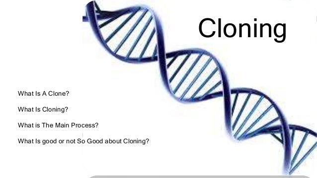 Cloning What Is A Clone? What Is Cloning? What is The Main Process? What Is good or not So Good about Cloning?