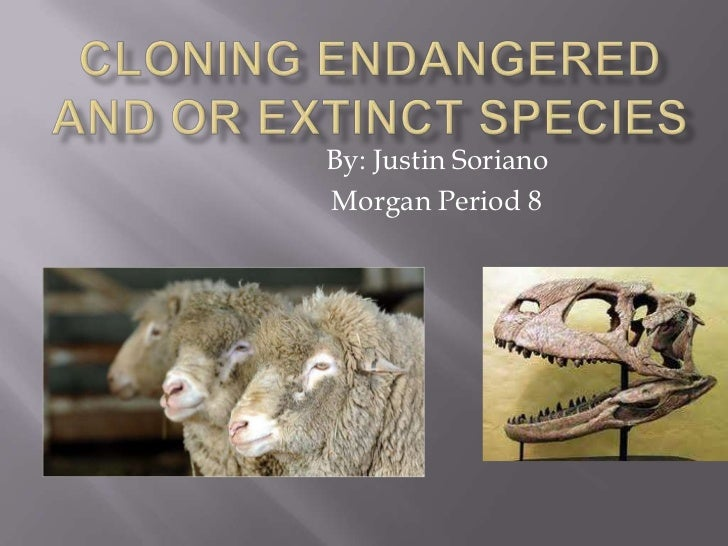Cloning Endangered and or Extinct Species<br />By: Justin Soriano<br />Morgan Period 8<br />