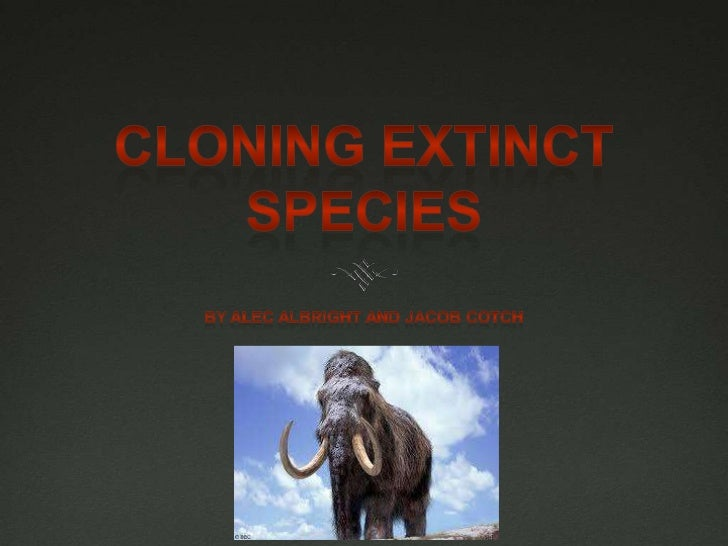 Cloning Extinct SPECIES<br />By Alec Albright and Jacob cotch<br />