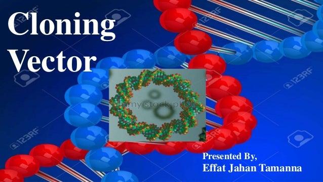 Cloning Vector Presented By, Effat Jahan Tamanna