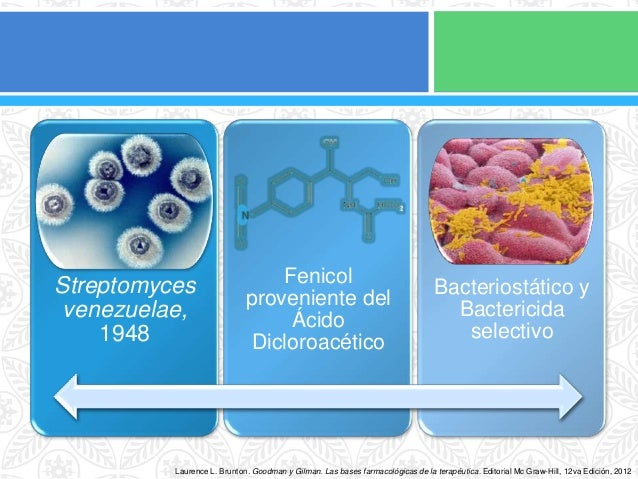 Cloranfenicol Slide 2
