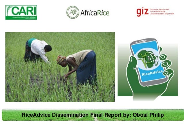 RiceAdvice Dissemination Final Report by: Obosi Philip