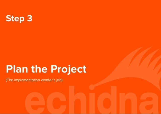 Step 3 Plan the Project (The implementation vendor's job)