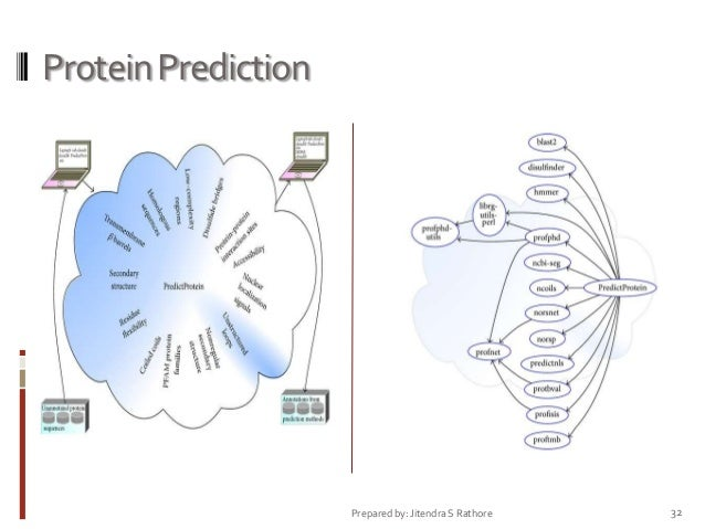 Protein Prediction  Prepared by: Jitendra S Rathore  32