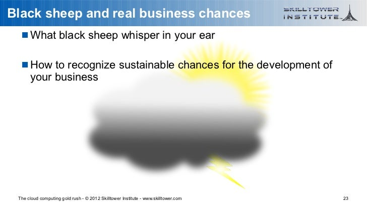Black sheep and real business chances    What black sheep whisper in your ear    How to recognize sustainable chances fo...