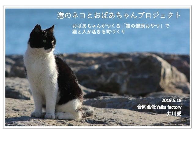 おばあちゃんがつくる「猫の健康おやつ」で 猫と人が活きる町づくり