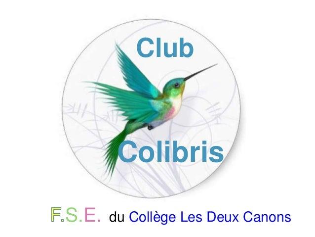 S.E. du Collège Les Deux Canons Club Colibris