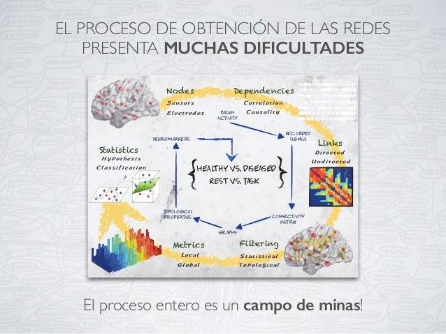 El proceso entero es un campo de minas! EL PROCESO DE OBTENCIÓN DE LAS REDES PRESENTA MUCHAS DIFICULTADES 2.4 The Brain as...
