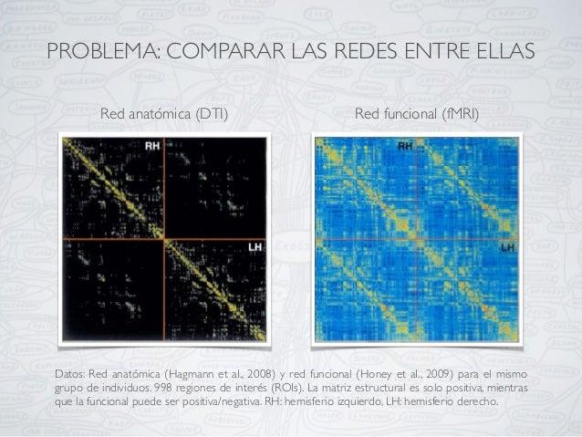 PROBLEMA: COMPARAR LAS REDES ENTRE ELLAS Datos: Red anatómica (Hagmann et aI., 2008) y red funcional (Honey et aI., 2009) ...