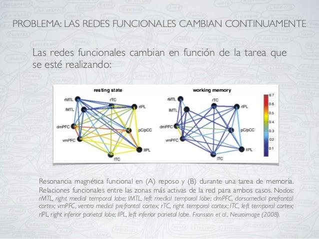 Resonancia magnética funcional en (A) reposo y (B) durante una tarea de memoria. Relaciones funcionales entre las zonas má...