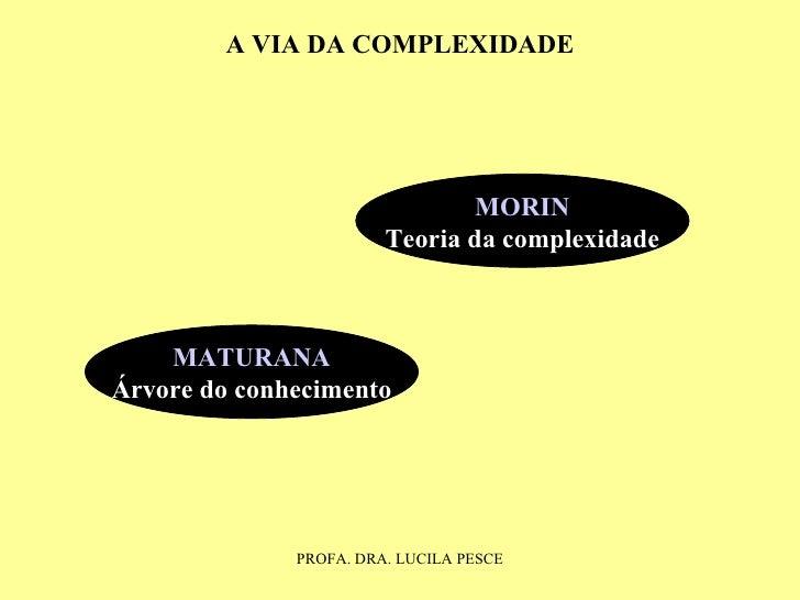 MATURANA Árvore do conhecimento MORIN Teoria da complexidade A VIA DA COMPLEXIDADE