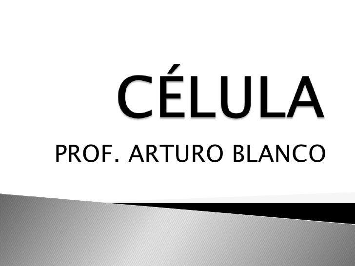 PROF. ARTURO BLANCO