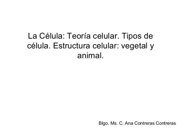 La Célula: Teoría celular. Tipos de célula. Estructura celular: vegetal y animal. Blgo. Ms. C. Ana Contreras Contreras
