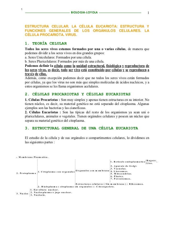 1                                                                       BIOLOGIA-LOYOLA                                   ...