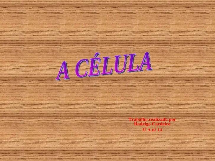 Trabalho realizado por Rodrigo Cordeiro 5º A nº 14 A CÉLULA