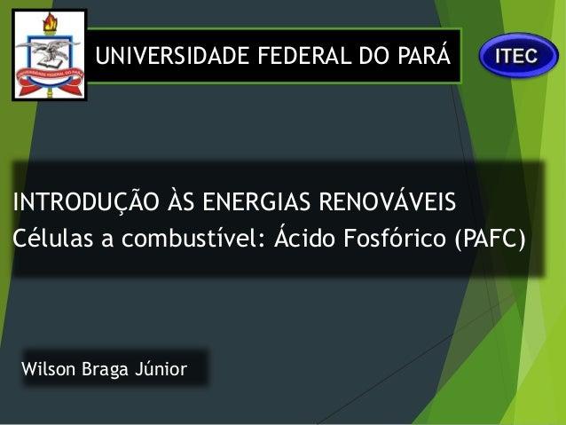 Wilson Braga Júnior INTRODUÇÃO ÀS ENERGIAS RENOVÁVEIS Células a combustível: Ácido Fosfórico (PAFC) UNIVERSIDADE FEDERAL D...