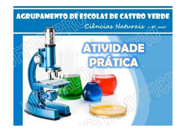 AGRUPAMENTO DE ESCOLAS DE CASTRO VERDE Ciências Naturais  – 8º ano