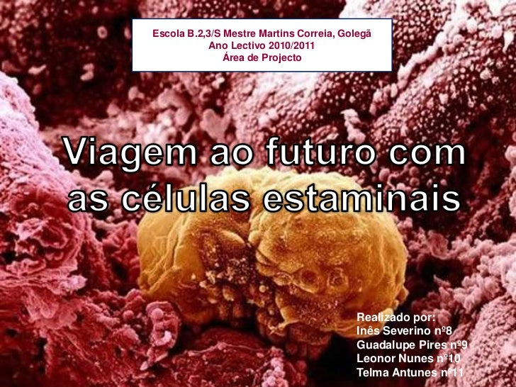 Escola B.2,3/S Mestre Martins Correia, Golegã<br />Ano Lectivo 2010/2011<br />Área de Projecto <br />Viagem ao futuro com ...