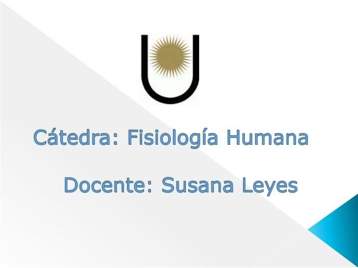 Cátedra: Fisiología Humana Docente: Susana Leyes<br />