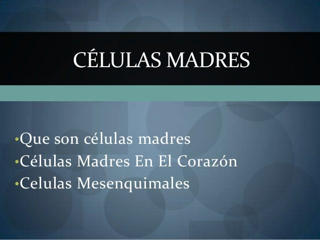 •Que son células madres •Células Madres En El Corazón •Celulas Mesenquimales CÉLULAS MADRES