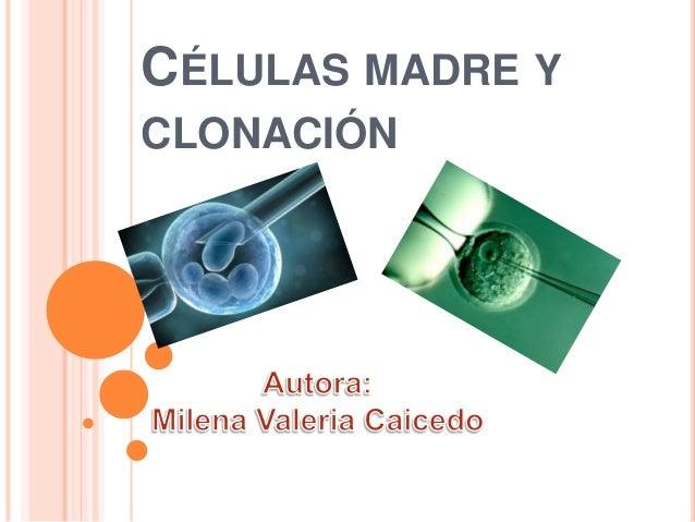 CÉLULAS MADRE Y CLONACIÓN