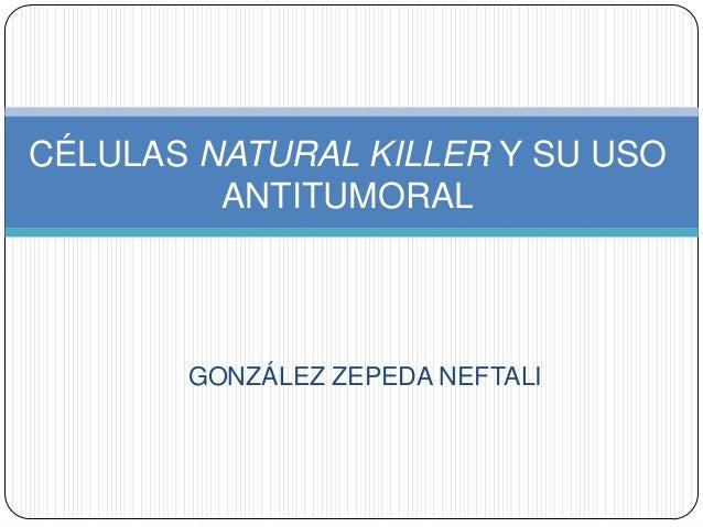GONZÁLEZ ZEPEDA NEFTALI CÉLULAS NATURAL KILLER Y SU USO ANTITUMORAL