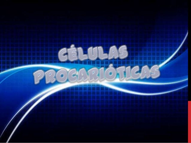 CÉLULAS PROCARIÓTICASOs organismos formados por células procarióticas designam-se porprocariontes, agrupam-se no Reino Mon...