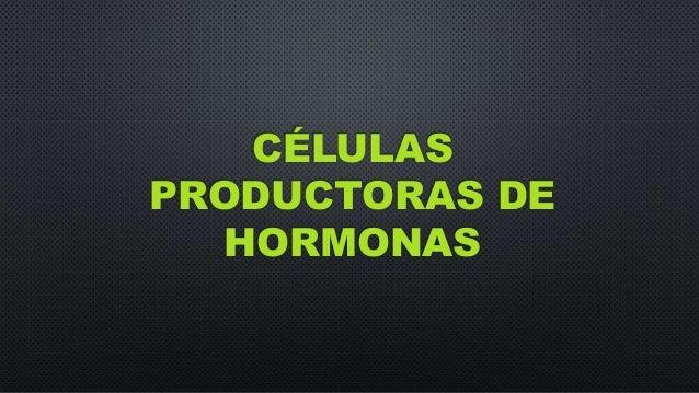 CÉLULAS PRODUCTORAS DE HORMONAS