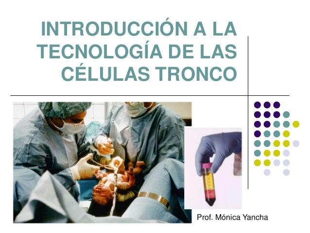 INTRODUCCIÓN A LATECNOLOGÍA DE LAS  CÉLULAS TRONCO             Prof. Mónica Yancha