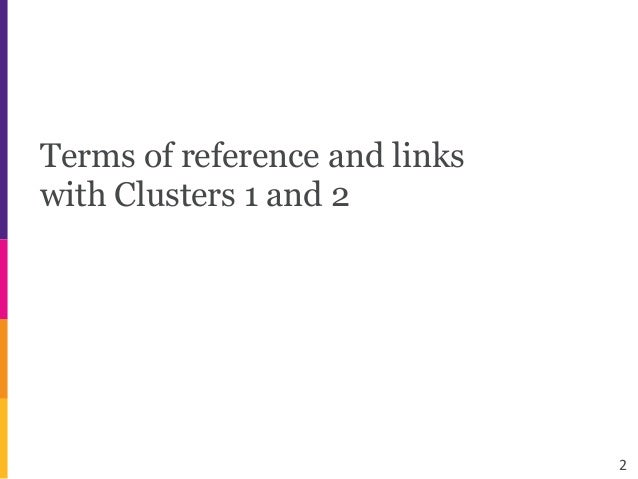 Terms of reference and links with Clusters 1 and 2 2
