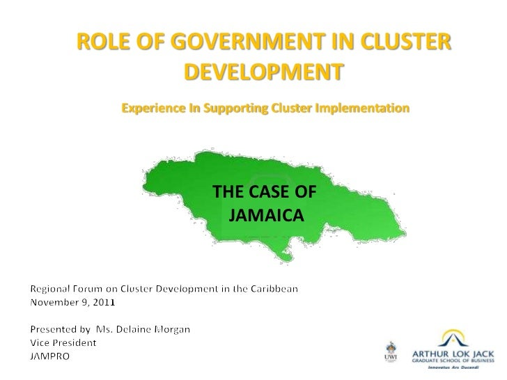 ROLE OF GOVERNMENT IN CLUSTER              DEVELOPMENT             Experience In Supporting Cluster Implementation        ...