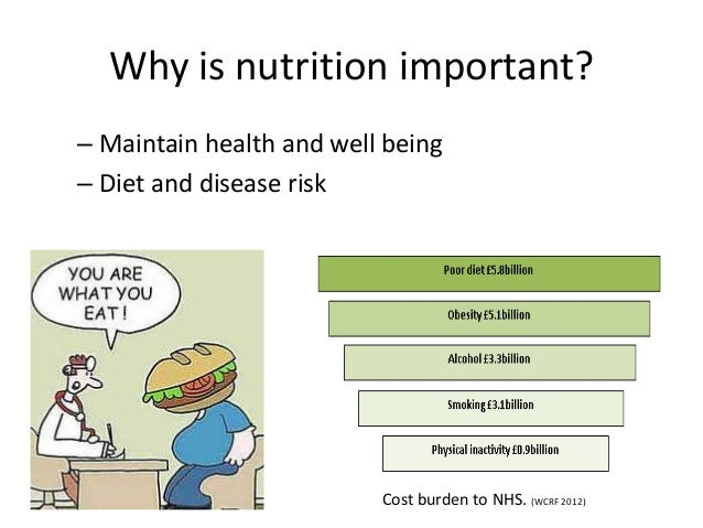 an introduction to the importance of nutrients Nutrition v 10 an introduction to nutrition is available under a creative commons attribution-noncommercial nutrients important for metabolism and blood.