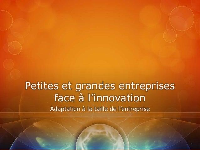 Petites et grandes entreprises      face à l'innovation     Adaptation à la taille de l'entreprise